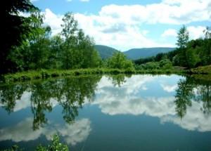 Festival Musique et Mémoire au Pays des 1000 étangs