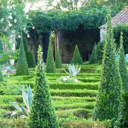 Dans les Jardins de William Christie : 20-27 août 2016