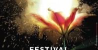 ambronay 2014 festival
