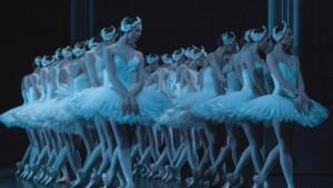 cygnes-lac-noureev-classiquenews-Le-Lac-des-Cygnes_corps-de-ballet
