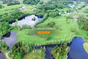 VOSGES DU SUD : le Festival Musique & Mémoire diffuse l'excellence au Pays des 1000 étangs
