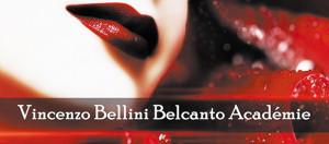 academie-vincenzo-bellini-vendome-2018-presentation-par-classiquenews-affiche-concert