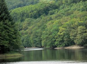 lac-de-chaumecon-parc-regional-morvan-format-paysages-festival-par-classiquenews-1
