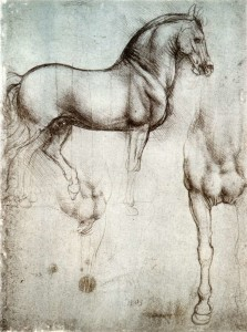 Study_of_horse