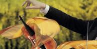 orleans-orchestre-symphnique-ode-a-clara-annonce-critique-concert-classiquenews-orleans-Juin-depuis-plaquette-566x1024