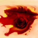 carmen-bizet-alexandre-bloch-opera-lille-onl-orchestre-national-de-lille-annonce-opera-critique-opera-classiquenews-juillet-2019